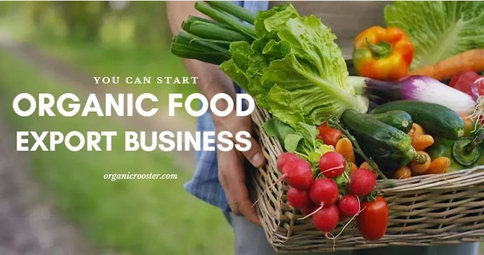 Best Ways to Save Money On Organic Food