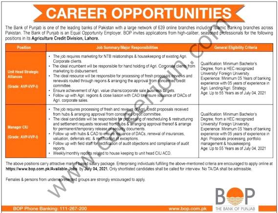 New Jobs in Bank of Punjab BOP-2021