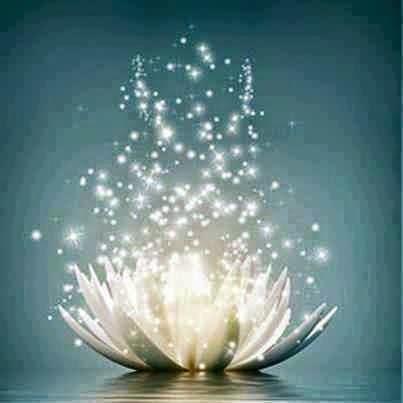 Yo Practico Yoga Qué Significa La Flor De Loto En Yoga