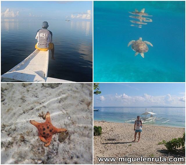 Island-Hopping-Panglao-Filipinas