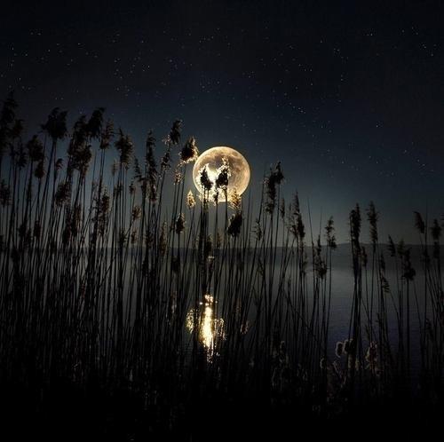 """Dalam bulan puasa ni, jangan sangka gangguan jin tak berlaku"""