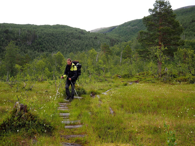 chata Ingjerdbu,Vettismorki, příroda, zeleň, flora, květiny, Norsko, Utladalen