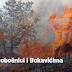 Požari u Dobošnici i Bokavićima