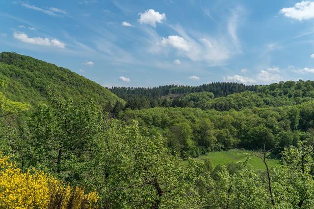 Traumschleife Dünnbach-Pfad - Saar-Hunsrück-Steig  Premiumwanderweg Kastellaun  Wandern im Hunsrück 05
