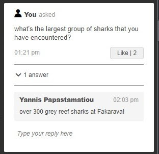 Yannis the shark expert answers our question
