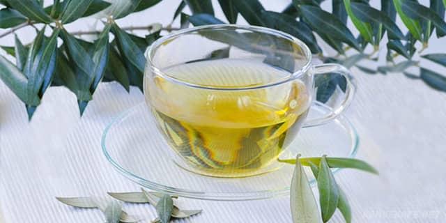 zeytin yaprağı çayı içenler, zeytin yaprağı çayı içilir mi, ender saraçoğlu - www.kahvekafe.net