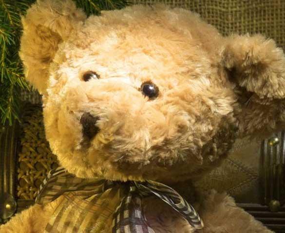 Teddy%2BBear%2BImages%2BPics%2BHD32