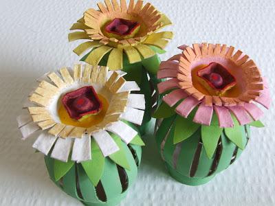 fiori e cactus con tubi di cartone