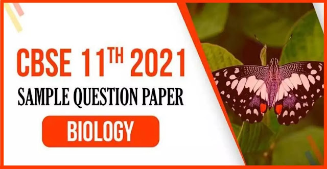 11 Class Biology Sample Paper PDF Download