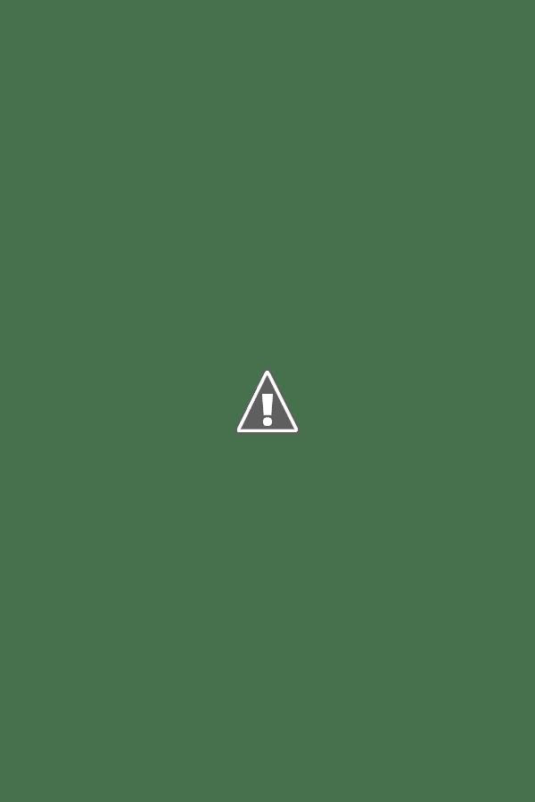 Elena Radianova