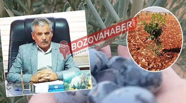 Bozova'da tarımda proje atağı