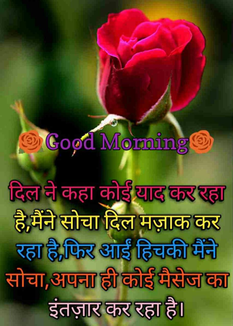 Best Good Morning Hindi Shayari    इस साल के टाॅप गुड मॉर्निंग शायरी