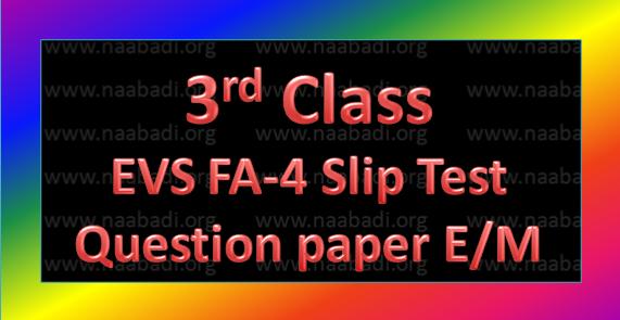 FA-4 3rd Class EVS Slip Test Question Paper E/M