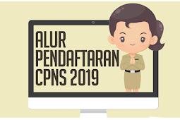 Resmi Dibuka Besok, Ini Alur Pendaftaran CPNS 2019