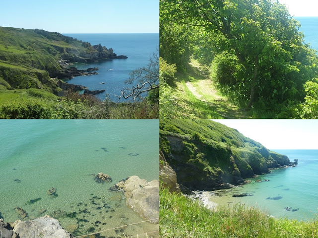 Caerhays Cornwall