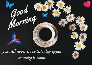 Best Good Morning HD Images for whatsaap free download, Romantic Good Morning English Status, 100 whatsaap  Good Morning wishes HD photos,