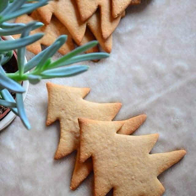 tarçınlı zencefilli kurabiye, yeni yıl kurabiyesi, christmas cookie