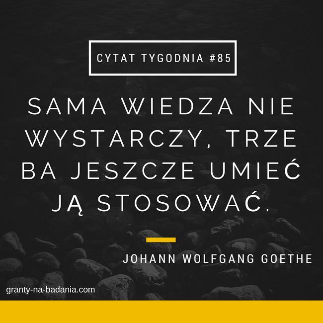 Johann Wolfgang Goethe - Sama wiedza nie wystarczy, trzeba jeszcze umieć ją stosować.