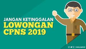 Lowongan Pendaftaran CPNS Tahun 2019