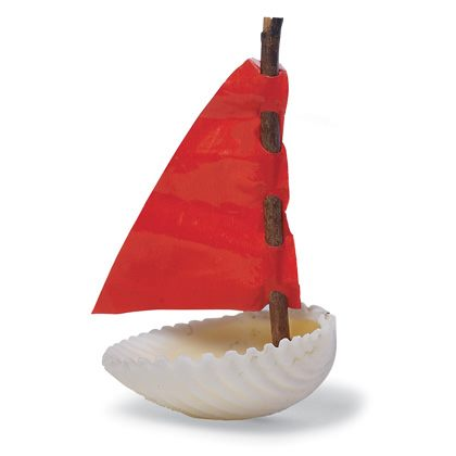 Seashell Sailboat