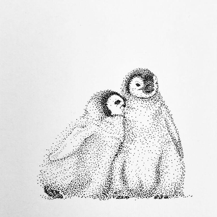 02-Penguin-chicks-María-Lecanda-www-designstack-co