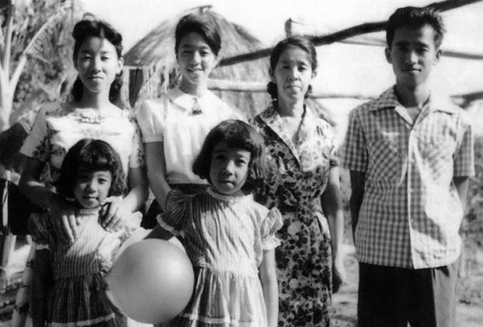 Associação Japonesa celebra 113 anos de imigração no Brasil
