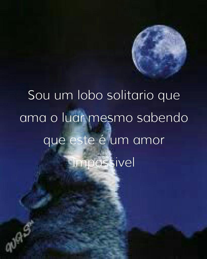 W F S Frases E Pensamentos Sou Um Lobo Solitario Que Ama O Luar