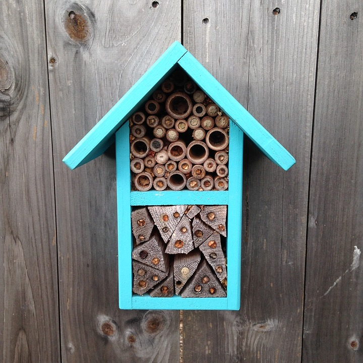 how to build a honey bee house