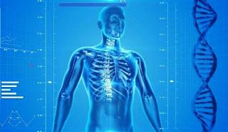 Human Body Amazing Facts In Hindi | मानव शरीर के रोचक तथ्य - BeawareYT