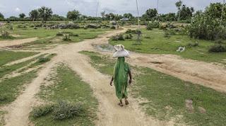 covid-destroy-rural-economy