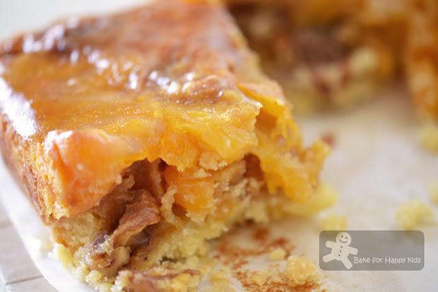 apricot walnut slice