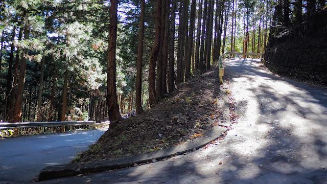 東京近郊の激坂として有名な和田峠を越えて相模湖に下り、大垂水峠を越えて高尾側に戻るサイクリングコース。和田峠から陣馬山頂へは登山道で20分。