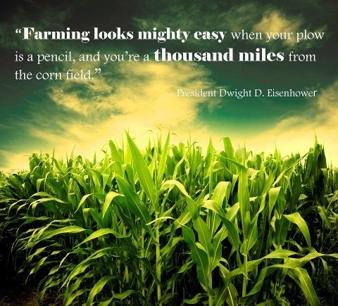 Farming Looks Mighty Easy When Your Plow