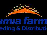 Lowongan Kerja PT Kimia Farma Trading & Distrubution Desember 2020