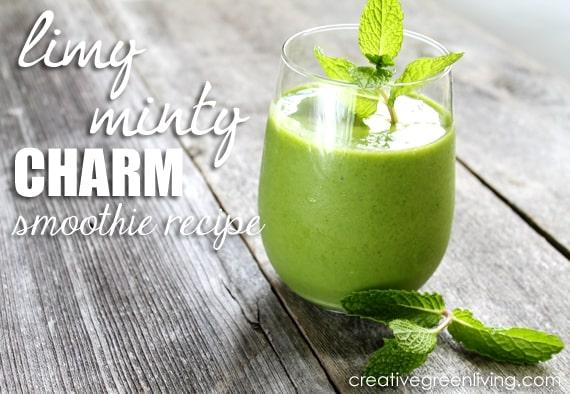 Fresh fruit mint smoothie vegan whole food