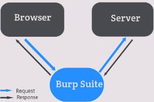 how burp works