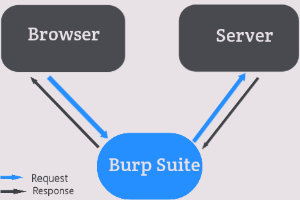 How does burp suite works