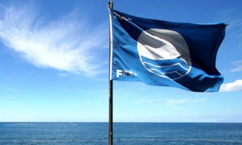 Έντεκα γαλάζιες σημαίες θα κυματίζουν φέτος στις παραλίες της Ηπείρου. Οι επτά θα βρίσκονται σε ακτές της Πρέβεζας και της Πάργας και οι τέσσερις σε ακτές της Θεσπρωτίας.