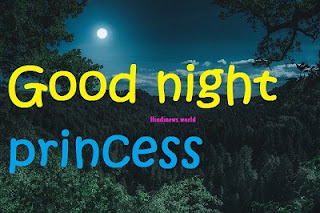 good night princess
