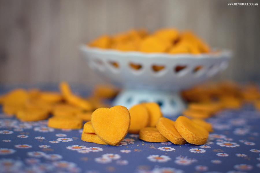 Hundekekse  backen Rezept mit Süßkartoffeln und Parmesan