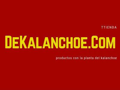 Propiedades del Kalanchoe Daigremontiana, te mostramos productos con esta planta medicinal