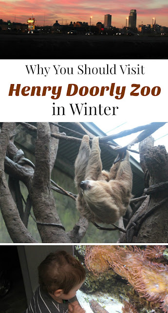 3 reasons to visit omaha 39 s henry doorly zoo during winter. Black Bedroom Furniture Sets. Home Design Ideas