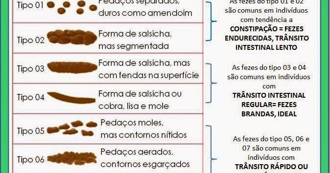 Dog Giardia Treatment Natural Homeopathic Remedies