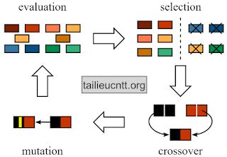 Giải thuật tiến hóa - thuật toán di truyền