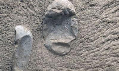 Κίνα: Ανακαλύφθηκαν 215 απολιθωμένα αυγά πτερόσαυρων