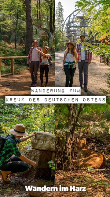 Rundwanderung zum Kreuz des deutschen Ostens  Wandern im Harz  Luchsgehege Bad Harzburg 21