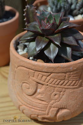 Terracotta Succulent Pot - Designer Cactus and Succulent Planters Garden Design Inspire Bohemia - Miami and Ft. Lauderdale Succulent Business