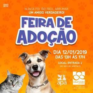 Uberlândia Shopping e APA realizam feira de adoção de cães e gatos ... 8e9e7714a3