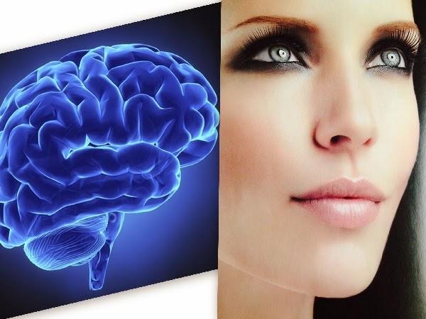 Relación entre piel y cerebro