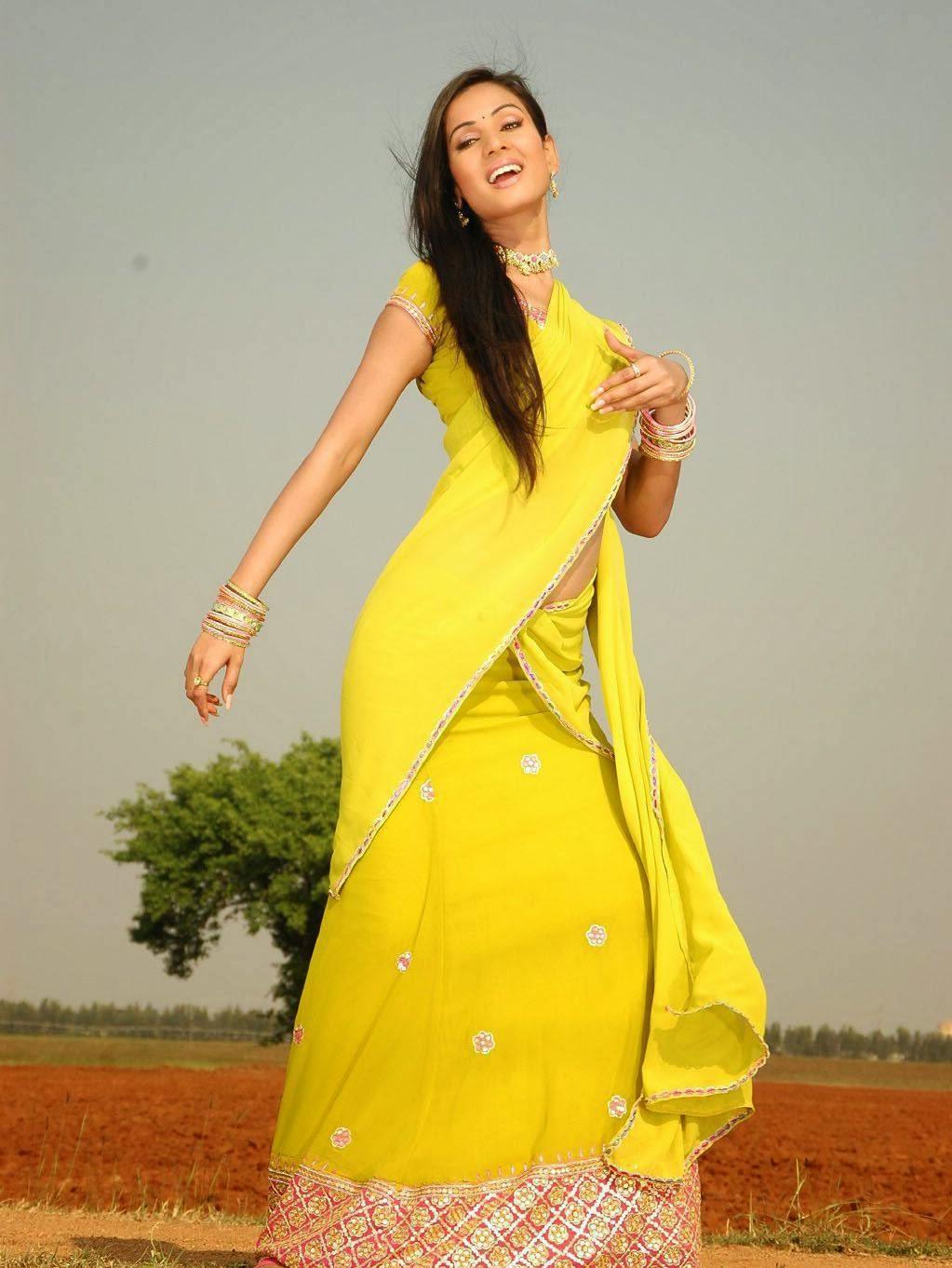 Sonal Chauhan Hot Photo Gallery In Half Saree  Hq Pics N -3406